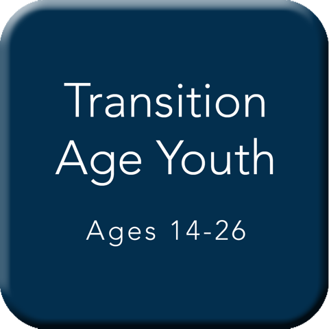Transition Age Youth (14-26) Button